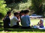 grupa ludzi na łonie natury, piknik